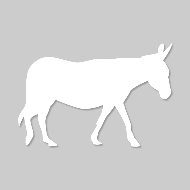 the_white_donkey_square